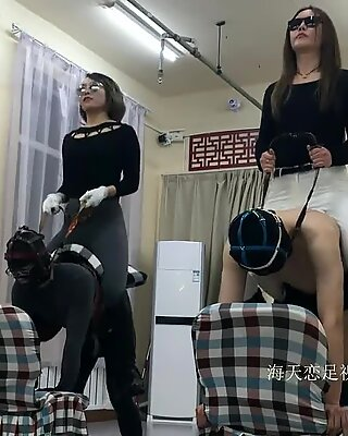 2 hostess riding competitions